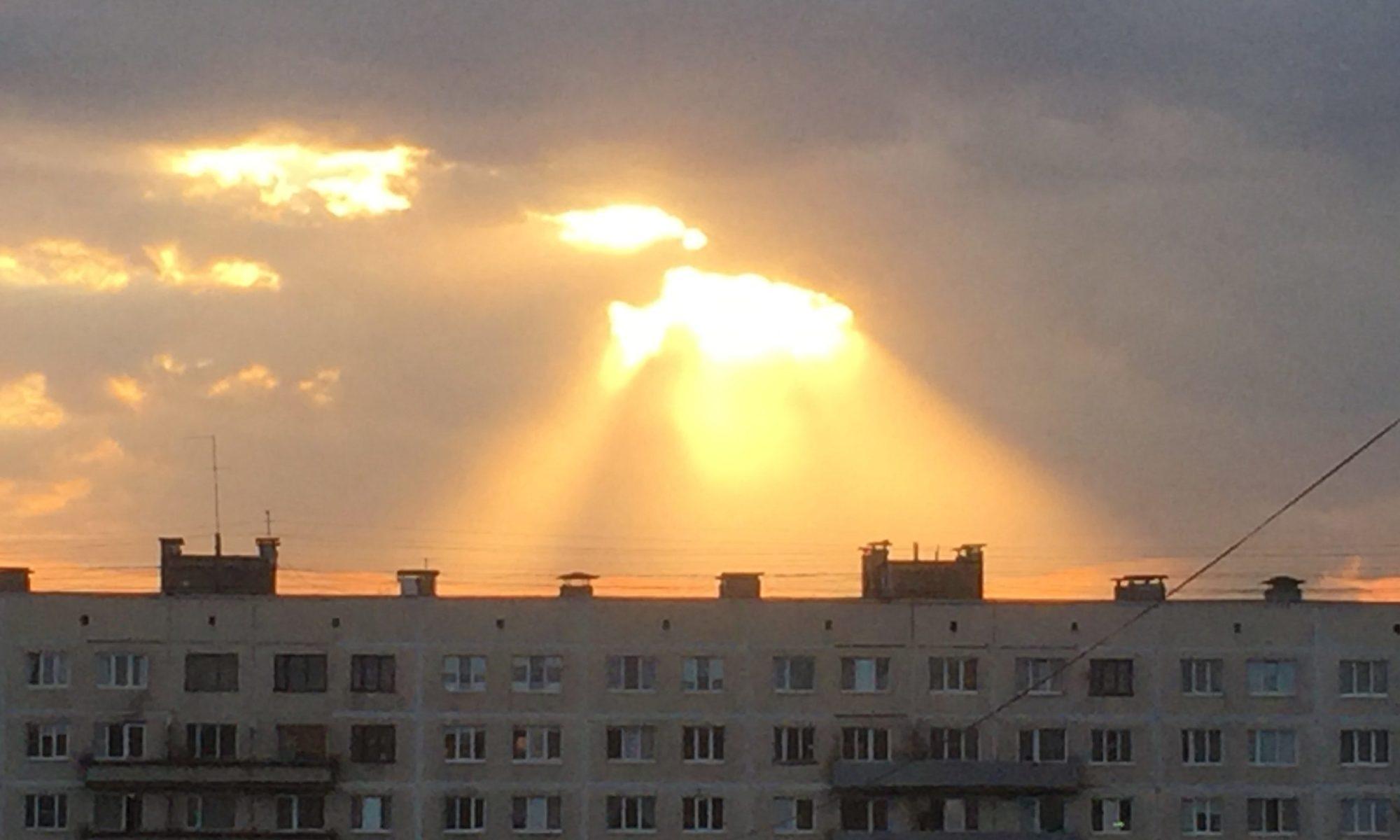 """ТСЖ """"Культуры 29/1"""""""